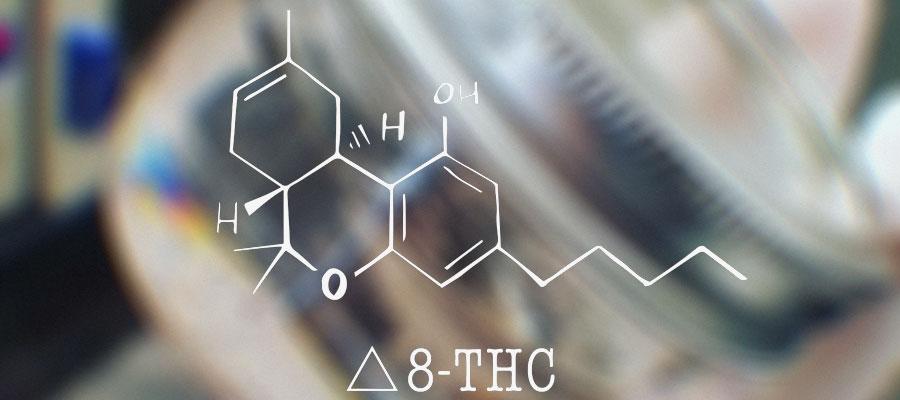 Benefits, How It Works & Scientific Evidence | CBDNewsFeed